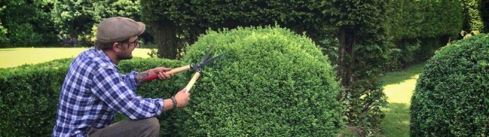Cissbury Gardening